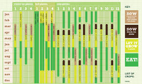 how to plan a vegetable garden layout free vegetable planting calendar for container gardeners