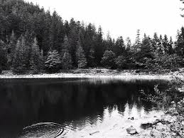 chambre d hotes la bresse chambres d hôtes à proximité du lac des corbeaux la bresse