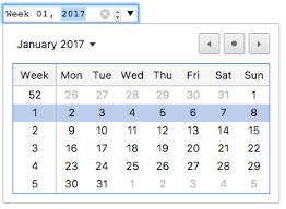 html input pattern safari input type week html mdn