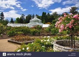 New Zealand Botanical Gardens Winter Garden Glasshouse From Gardens Dunedin Botanical