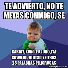 Meme Karate - meme bebe exitoso te advierto no te metas conmigo se karate