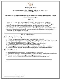 Sales And Marketing Resume Sample by Over 10000 Cv And Resume Samples With Free Download Marketing