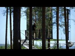 how to build an invisible tree house world s strangest