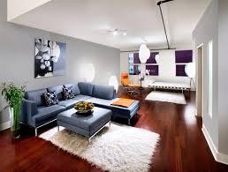 blue living room color schemes home design ideas unique blue color