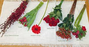 types of red colors red flowers for wedding home design health support us