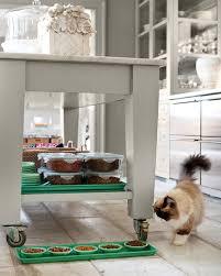 cat running into glass door martha u0027s 50 top kitchen tips martha stewart