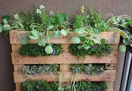 18 easy hanging gardens ideas for outdoors outdoor decorating