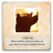 sympathy for loss of dog pet loss quotes simple sympathy