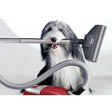 bearded collie montreal aspirateur vacupro montreal business directory hb