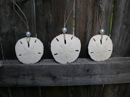 34 best sand dollars images on sand dollars sands and