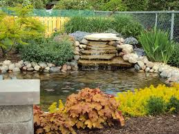 spacious area for awesome backyard pond pictures with stone pool