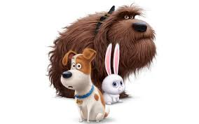 wallpaper dogs hares the secret life of pets 2016 cartoons white