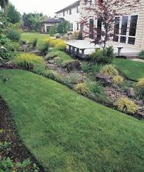 Drainage Ideas For Backyard This Small Backyard Was Just A Flat Rectangular Lawn Now It Has