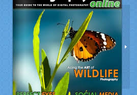 cool app websites reveal flip book free easy to use app to make your websites and