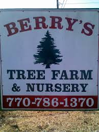 berry u0027s christmas tree farm at almon road in covington ga will be