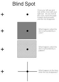 What Is The Blind Spot The Science Of Optical Illusions