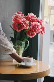 free stock photos of flower vase pexels