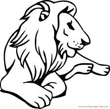 coloring page lion big lion color page