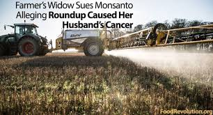 Monsanto Vanity Fair Gmo U2013 Myelomablogs Org