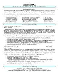 assistant manager cover letter lukex co