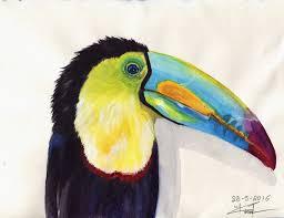 ornithology a sketchbook full of bird sketches u2013 marialena sarris
