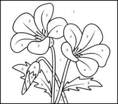 campanula coloring printables apps kids