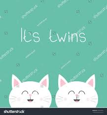twins two cute twin cats cat stock illustration 676374292