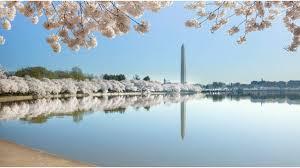 Washington travel packs images What should i pack for a trip to washington d c washington jpg