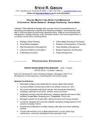 download social media manager resume haadyaooverbayresort com
