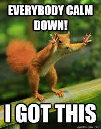 Calm Down Meme - everybody calm down i got this panic squirrel quickmeme