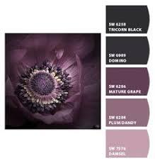 sherwin williams purple paint color u2013 mature grape sw 6286