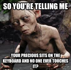 Gollum Memes - so you re telling me your precious sits on the keyboard and no one