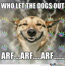 Who Let The Dogs Out Meme - who let the dogs out by desluv meme center
