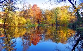 nature lake reflections wallpapers lake nature lake view autumn colourful trees beautiful colours