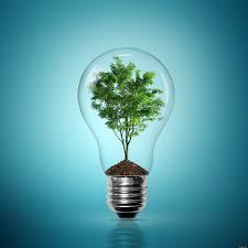 eco friendly light bulbs led vs cfl who wins see the battle of the eco bulbs
