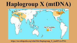 Haplogroup World Map by Haplogroup X Mtdna Youtube