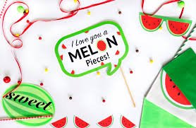 watermelon party theme simply made with sam