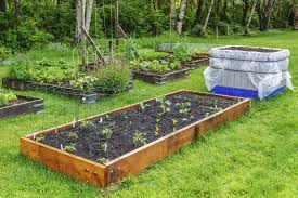 Raised Gardens You Can Make by How To Create Your Own Fruit And Vegetable Garden