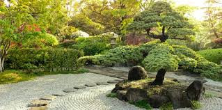 interesting creating a zen garden how to create in your backyard