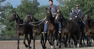 Texas How Far Can A Horse Travel In A Day images The clones of polo adolfo cambiaso interview with 60 minutes on jpg