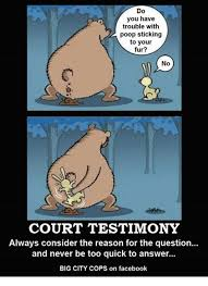 Meme Poop - do you have trouble with poop sticking to your fur no court