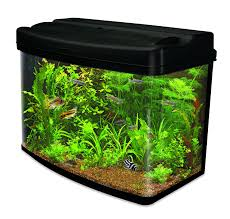 How To Make Fish Tank Decorations At Home Amazon Co Uk Aquariums Glass Aquariums Plastic Aquariums Fish