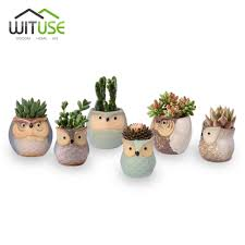 small planter wituse 6x cute owl face ceramic flower pots small glazed plant pot