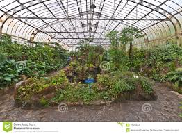 botanical gardens greenhouse sao paulo brazil stock images image