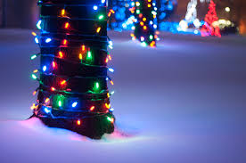 Zoo Lights Oakland Ca by Experience The Magic Of The Detroit Zoo In Winter As You Take In