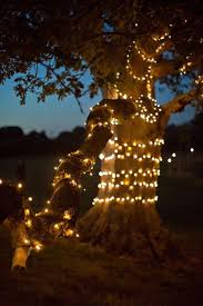 Fairy Light Tree by 165 Best Chwv Outdoor Weddings Images On Pinterest Outdoor