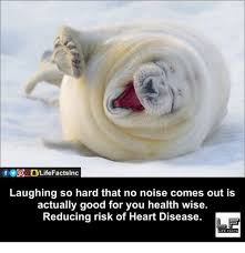 Laughing Hard Meme - laughing so hard that no noise comes out is actually good for you