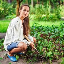 Gardening Vegetables For Beginners by Basic Urban Gardening Tips For Beginners Vegetable Gardener