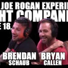 Joe Rogan Meme - fight companion june 18 2016 the joe rogan experience on acast