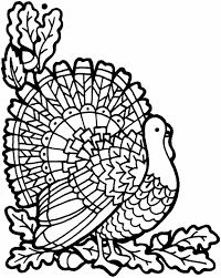 color pages for thanksgiving a for thanksgiving cfeddceeffjpg turkey coloring sheets on a